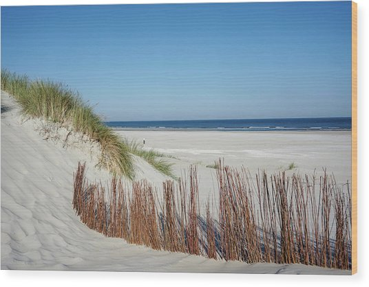 Wood Print featuring the photograph Coast Ameland by Anjo Ten Kate