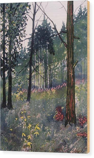Codbeck Forest Wood Print