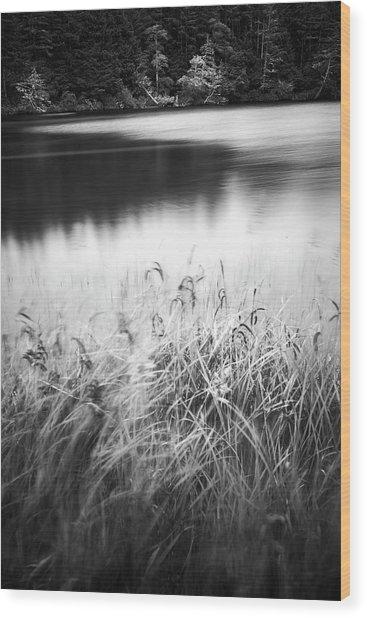 Coffenbury Lake Wood Print