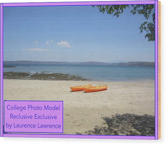College Photo Model Bn Wood Print