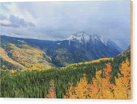 Colorado Aspens And Mountains 3 Wood Print