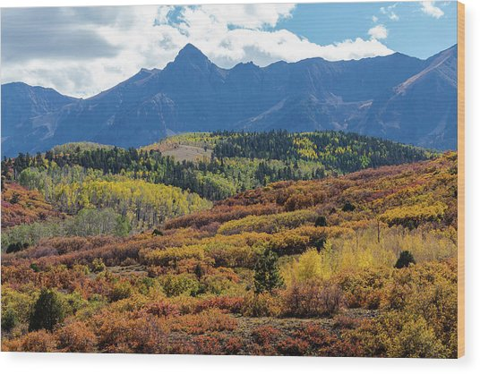 Wood Print featuring the photograph Colorado Color Bonanza by James BO Insogna