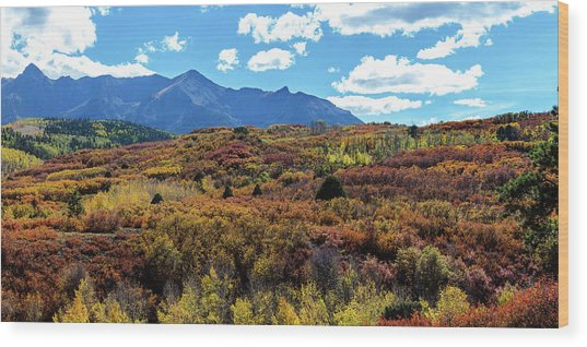 Wood Print featuring the photograph Colorado Painted Landscape Panorama Pt2 by James BO Insogna