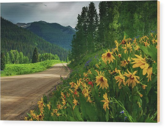 Wood Print featuring the photograph Colorado Wildflowers by John De Bord