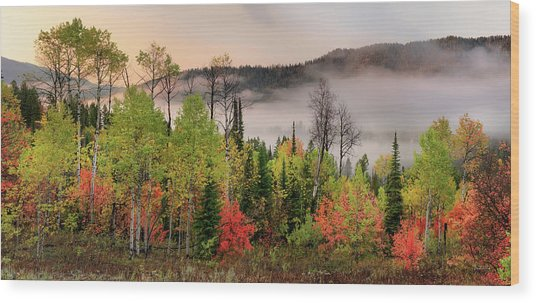 Colorful Autumn Morning Wood Print by Leland D Howard