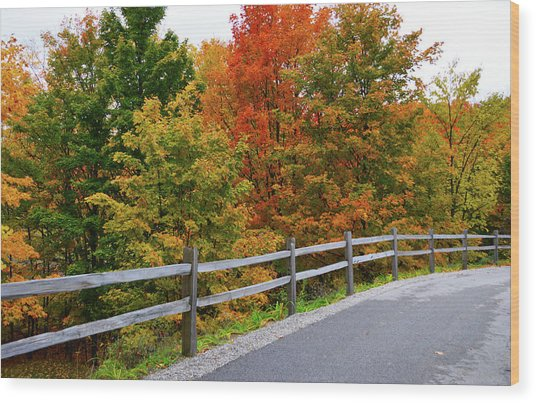 Colorful Lane Wood Print