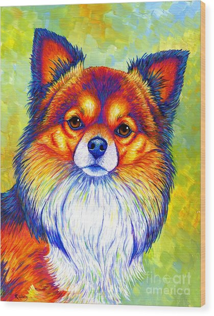 Colorful Long Haired Chihuahua Dog Wood Print