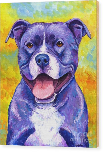 Colorful Pitbull Terrier Dog Wood Print
