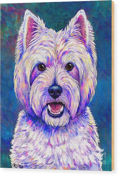 Colorful West Highland White Terrier Blue Background Wood Print