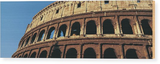 Colosseum, Rome, Italy Wood Print by Jeremy Woodhouse