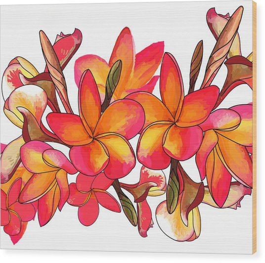 Wood Print featuring the drawing Coloured Frangipani White Bkgd3 by Joan Stratton