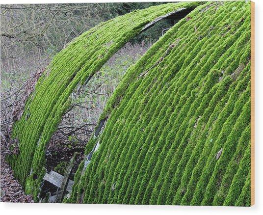 Colours. Green Wood Print