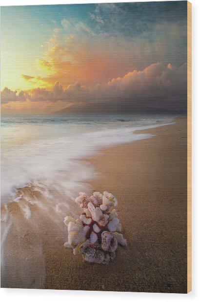 Come Back To The Sea / Maui, Hawaii  Wood Print