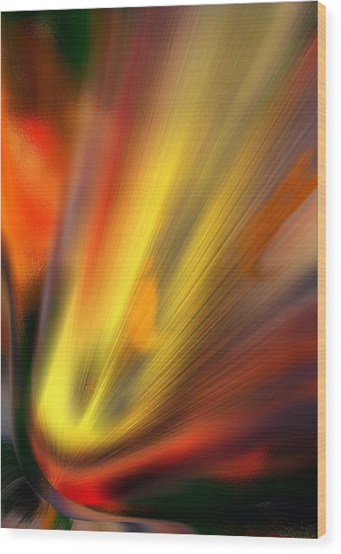 Wood Print featuring the digital art Comet I by Roy Erickson