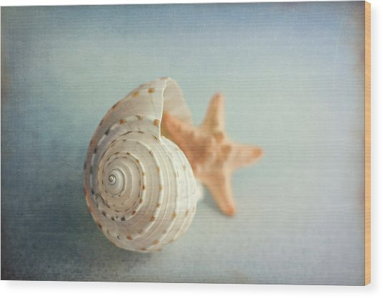 Conch Shell And Starfish Wood Print