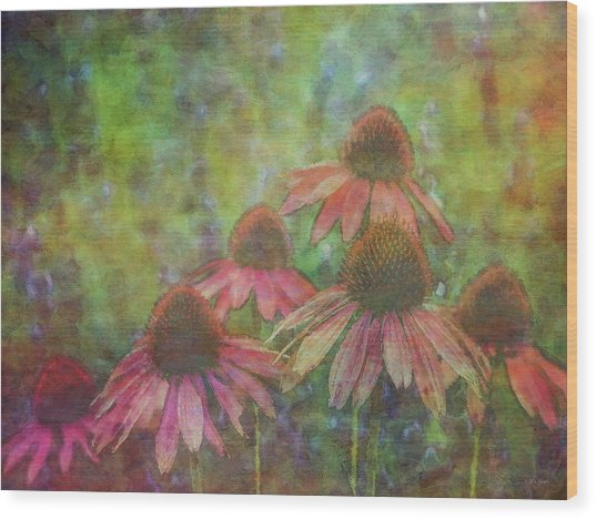 Coneflowers Among The Lavender 1667 Idp_2 Wood Print