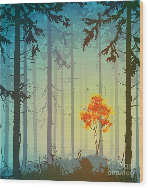 Coniferous Forest With Autumn Tree And Wood Print