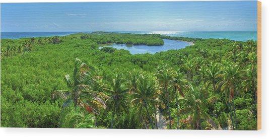 Contoy Island Wood Print