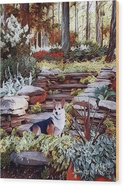 Corgi At Highgarden Wood Print