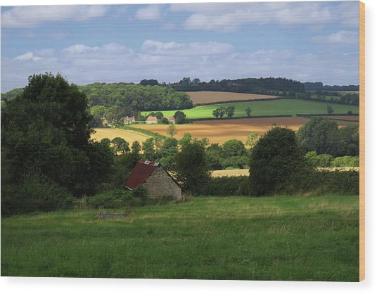Cotswold Field England 81601 Wood Print