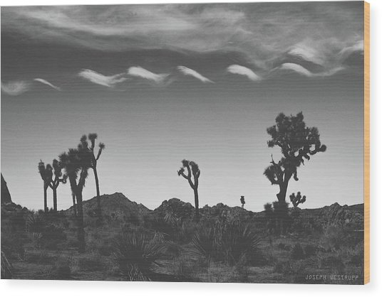 Cotton Sky On Joshua Trees Wood Print
