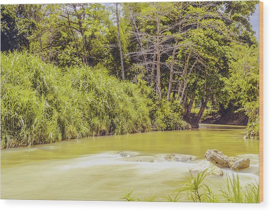 Country River In Trelawny Jamaica Wood Print