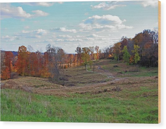 Wood Print featuring the photograph Countryside In The Fall by Angela Murdock