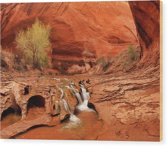 Coyote Gulch Texture Wood Print by Leland D Howard