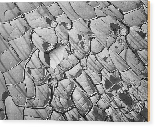 Cracked Earth Abstract Wood Print
