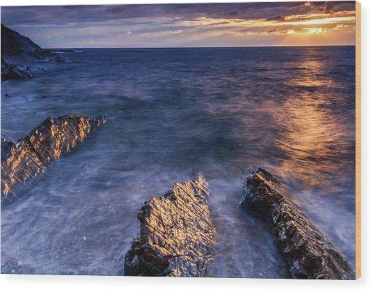 Crackington Haven Beach, Cornwall Wood Print by David Ross
