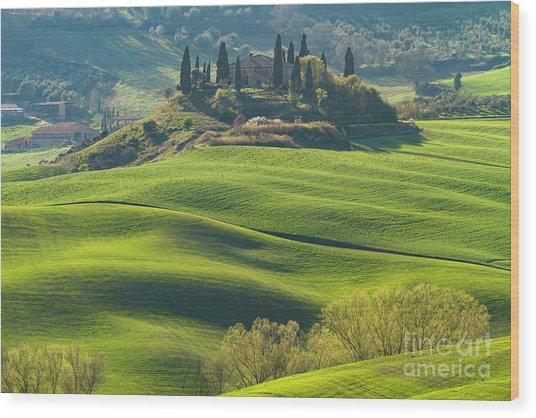Crete Senesi Rolling Farmland-3 Wood Print