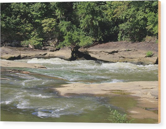 Wood Print featuring the photograph Cumberland River by Angela Murdock