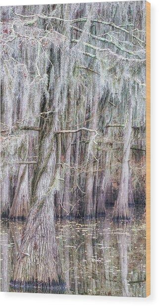 Cypress Dance - Jo Ann Tomaselli Wood Print