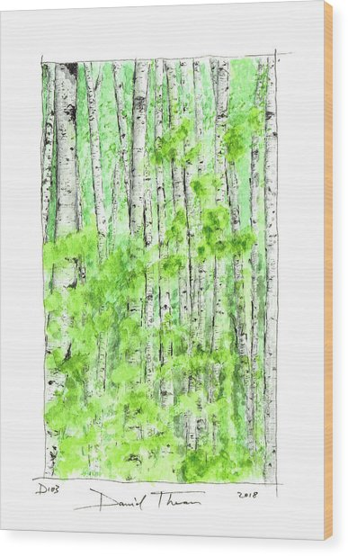 D103 Wood Print