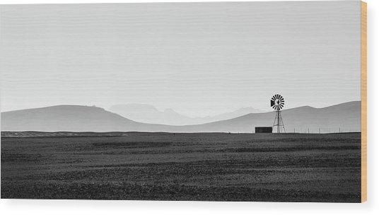 D1148p Wood Print