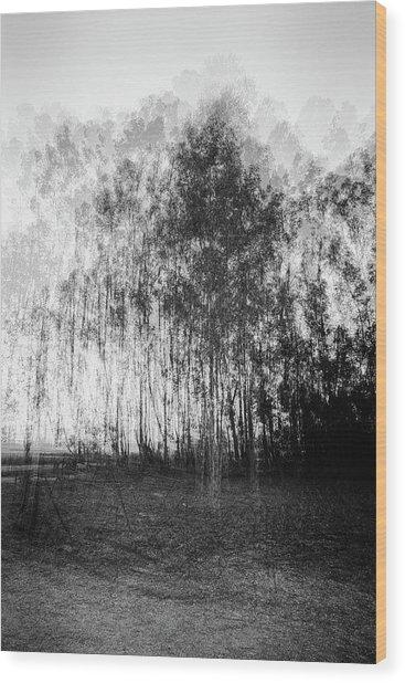 D1984p Wood Print
