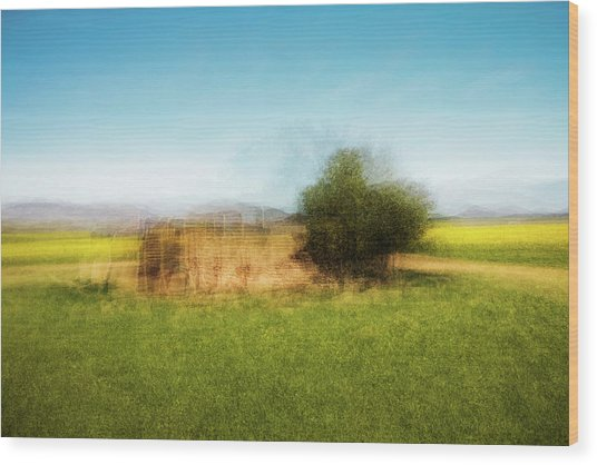 D1992p Wood Print