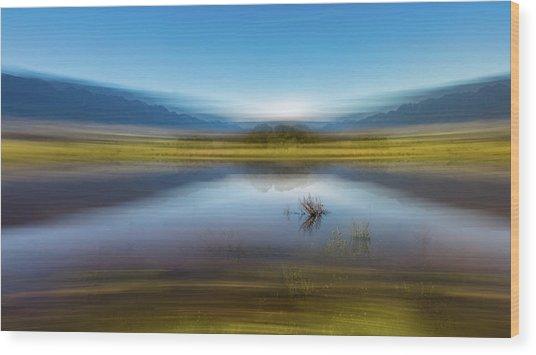 D2056p Wood Print