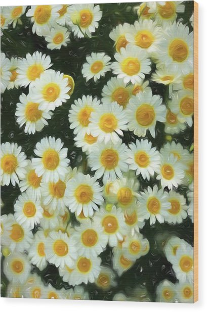 Daisy Crazy For You Wood Print
