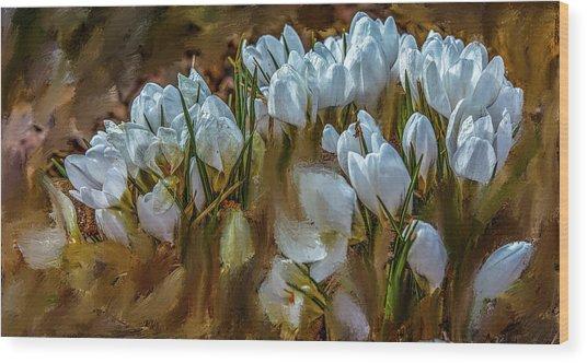 Dance In White #i6 Wood Print