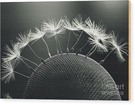 Dandelion Seeds Macro Wood Print