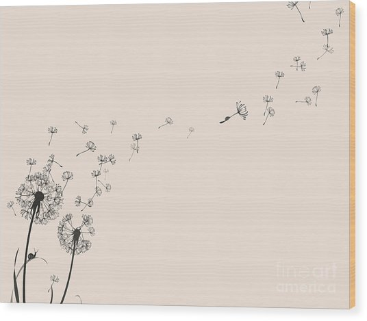 Dandelion Silhouette Snail And Ladybug Wood Print