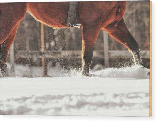 Dashing Through The Snow Wood Print by JAMART Photography