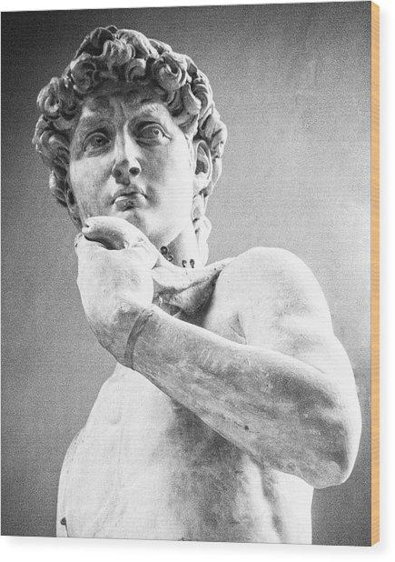 David Of Michelangelo Wood Print