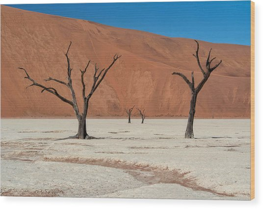 Wood Print featuring the photograph Deadvlei Namibia  by Rand