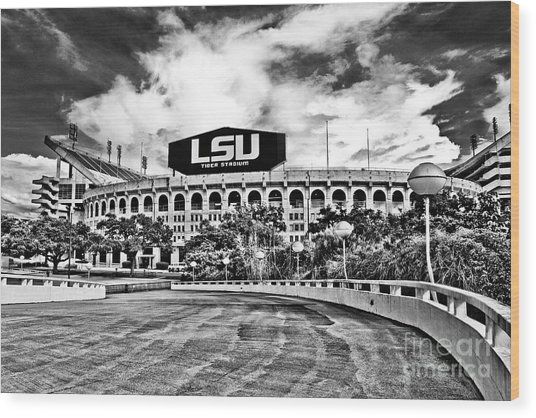 Death Valley - Hdr Bw Wood Print