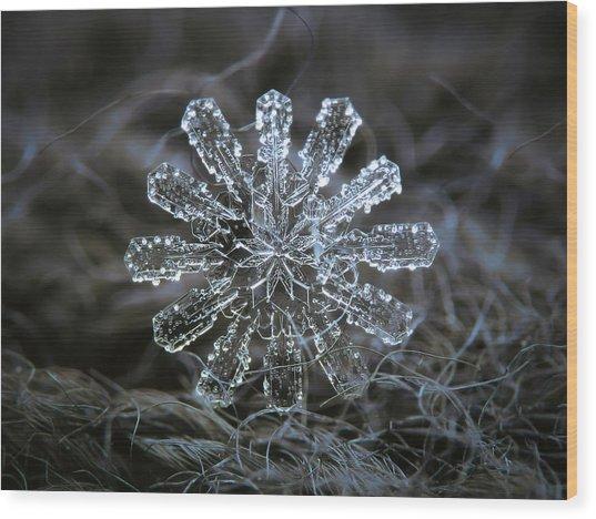December 18 2015 - Snowflake 3 Wood Print