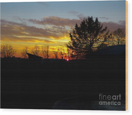 Wood Print featuring the photograph December Paint by Donald C Morgan