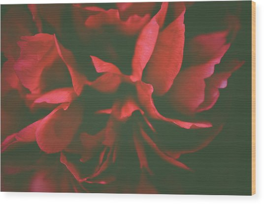 Deep Red Wood Print