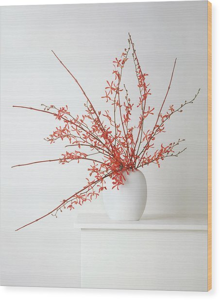 Deep Red Orchids And Dogwood In White Wood Print